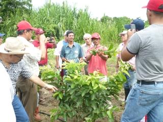 Centro Madre teamwork
